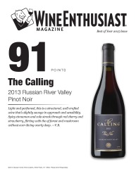 The Calling   2013 Russian River Valley   Pinot Noir   91 Points   Wine Enthusiast   Review